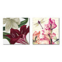 Stretched Canvas Art Botanical Christmas Amaryllis and Dragonfly Morning by Color Bakery Set of 2