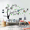 Photo Wall Stickers, Botanical Tree Birds Family