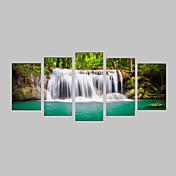 Impresiones Fotográficas Juego de Lienzo Impresión de lienzo Paisaje Fotográfico  Realismo Viaje Ocio Botánico Cinco Paneles Horizontal