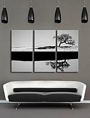 3のキャンバス地アート黒と白の木のセット