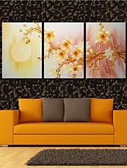 3の月のデコレーションセットの下梅の花が開いたキャンバス地アート