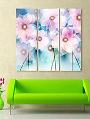 e-HOME® plátně umění květinové dekorativní malba set of 3