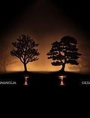 杉の影の投影常夜灯創造的主導のベッドサイドランプ