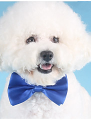 Cachorro Gravata/Gravata Borboleta Roupas para Cães Festa Formais Amarelo Vermelho Verde Azul Rosa claro