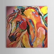 סוס מצויר ביד ציור שמן מופשט 1303-AB0425