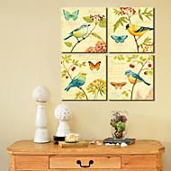 Estirada Lienzos Aves animales y Conjunto de la mariposa de 4