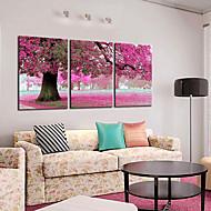 Leinwand Kunst Botanical Frühlings-Rosa-Baum von 3 Stellen