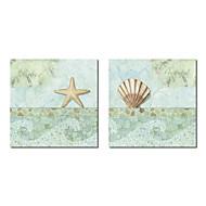 Trasferimenti su tela Art Still Life Spa Sea Shells di NBL Studio Set di 2