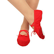 Women's Canvas And Leather Dance Shoes For Ballet/Ballroom(More Colors)
