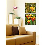 Dien Blume gedruckt Two-Piece Gemeinsame Rahmenlose Gemälde 9136