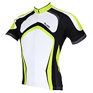 PALADIN Cycling Tops / Jerseys Men's Bike Breathable / Ultraviolet Resistant / Quick Dry Short Sleeve 100% Polyester StripeWhite / Green