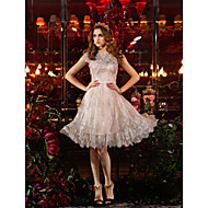 TS Couture Cocktail Party / Prom Dress Plus Sizes Sheath/Column Jewel Knee-length Lace