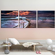 Stretched Canvas Art Landscape In The Evening The Coast Set of 3