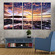 Stretched Canvas Art Seaside Reef Set of 5