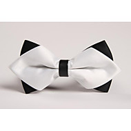Men Vintage/Party/Work/Casual Bow Tie , Polyester