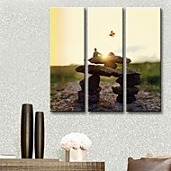 Stretched Canvas Art The Stone Of Life  Set of 3