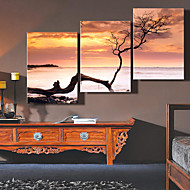 Reproducción en lienzo de arte del paisaje de tocar el cielo Juego de 3