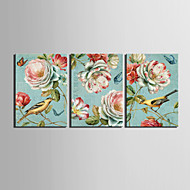 Reprodukce na plátně vintage zvířat ptáci a květinové sada 3 1301-0231