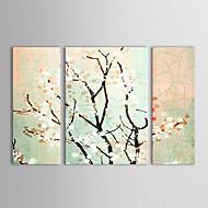 Ručně malované Květinový/Botanický motiv Tři panely Plátno Hang-malované olejomalba For Home dekorace