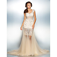 Military Ball / Formal Evening Dress - Champagne Plus Sizes / Petite Trumpet/Mermaid Queen Anne Sweep/Brush Train Tulle / Lace