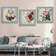 Abstrato / Floral/Botânico Quadros Emoldurados / Conjunto Emoldurado Wall Art,PVC Cinzento Sem Cartolina de Passepartout com frameWall