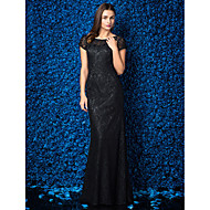 TS Couture® Formal Evening / Black Tie Gala Dress Plus Size / Petite Sheath / Column Jewel Floor-length Lace with Lace