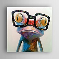 Oil Painting Modern Abstract Frog Hand Painted Canvas with Strecthed Frame
