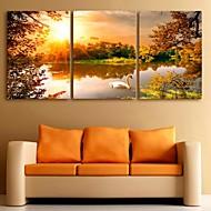e-Home® venytetty kankaalle art järvi sisustusmaalaus sarja 3