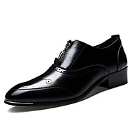 Men's Spring / Summer / Fall / Winter Pointed Toe Leather Casual Low Heel Zipper Black