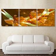 e-home® lona esticada arte flor fixa decoração pintura de 3