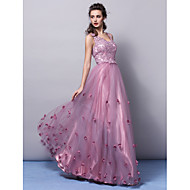 Formal Evening Dress Plus Sizes / Petite A-line / Princess V-neck Floor-length Tulle