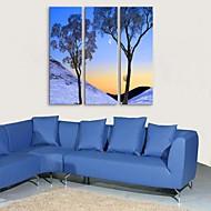 e-Home® venytetty kankaalle art puu koristemaalausta sarja 3
