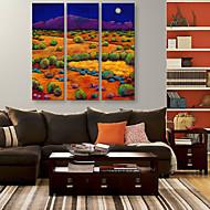 e-Home® venytetty kankaalle art väri kentät ja vuoret koristemaalausta sarja 3