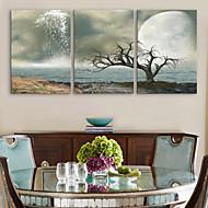 e-Home® venytetty kankaalle art Kuolleenmeren koriste maalaus sarja 3