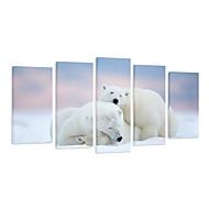visuele STAR® 5 stuks ijsbeer dier canvas prints voor kerstmis decor, klaar om op te hangen