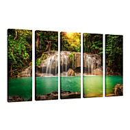 VISUAL STAR®Natural Landscape Canvas Art Print ,Forest Scenery Canvas Print Photo,Stretched and Ready to Hang