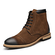 Men's Spring / Summer / Fall / Winter Bootie / Fashion Boots / Motorcycle Boots Leather Casual Low Heel Lace-up Black / Brown