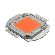 100W hele spekteret LED vokse chip 380nm`840nm for hydroponics anlegget / drivhus / innendørs hageplante