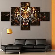 Stretched Canvas Art Animal Roar Set av 5