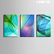 E-HOME® Stretched Canvas Art Transparent Leaves Decoration Painting  Set of 3