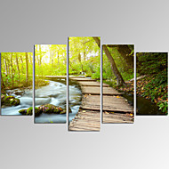 VISUAL STAR®5 Panel Forest Picture Print  on Canvas Landscape Wall Art for Living Room Decor Ready to Hang