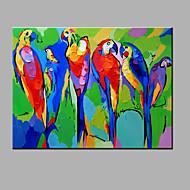 pintura a óleo moderna mão puro abstrato desenhar pronto para pendurar decorativo da pintura a óleo do papagaio