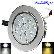 YouOKLight® 1PCS 12W Dimmable 3000K/6000K 1200lm Warm White/Cool White  LED Ceiling Light Lamp (AC110-120/220-240V)
