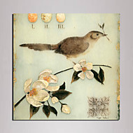 Mini Size Animal Canvas Print One Panel Ready to Hang , Square