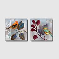 מצויר ביד בעלי חיים / Leisure / פרחוני/בוטנימודרני / ים- תיכוני / סגנון ארופאי שני פנלים בד ציור שמן צבוע-Hang For קישוט הבית