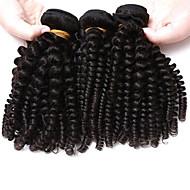Brazilian Kinky Curly Virgin Hair Afro Kinky Curly Hair 3 Bundles Lot Brazilian Virgin Hair Human Hair Extensions