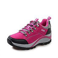 Women's Spring / Summer / Fall Comfort Pigskin Outdoor / Athletic Flat Heel Lace-up Purple / Red Hiking