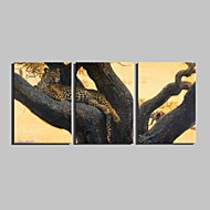 Tier / Botanisch Leinwand drucken Drei Paneele Fertig zum Aufhängen , Horizontal