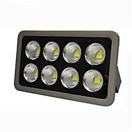 HRY 400W IP66 High Quality Floodlight Spot Lamp Waterproof COB Led Floodlight (AC85-265V)