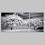 e-HOME lona envuelta arte el conjunto árboles decoración de pintura de 3